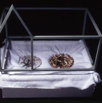 Drain, 2000