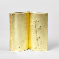 Book of Glands, 2019, wood, pigment, gol
