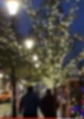 Screen Shot 2019-12-22 at 1.11.48 PM.png