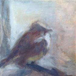 """Sparrow 2  (5""""x5"""")"""