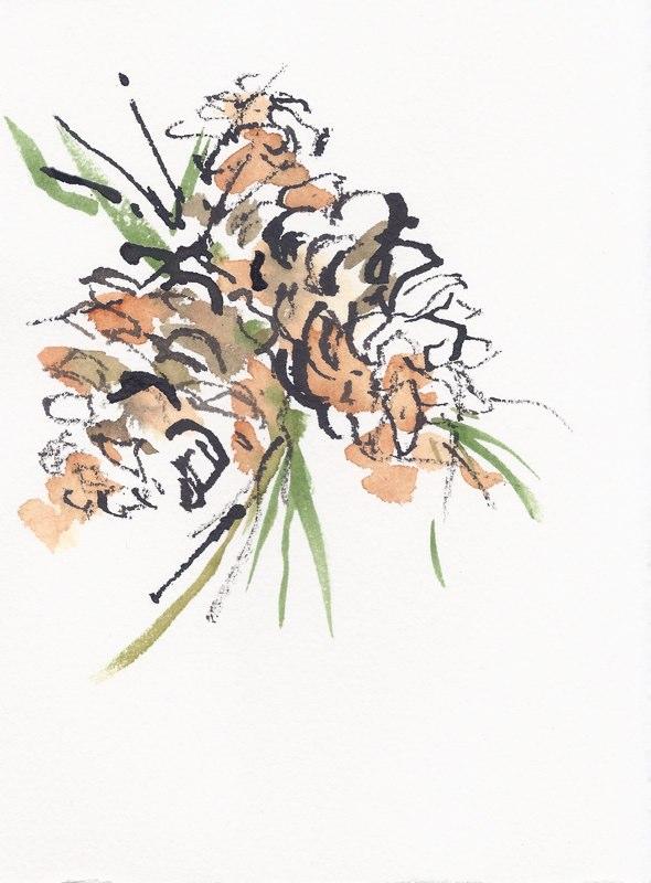 """Pine Cones  (5 1/2""""x7 1/2"""")"""