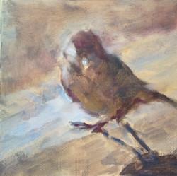 """Sparrow (5""""x5"""")"""