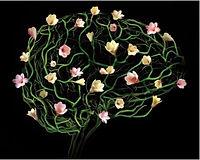 life coaching brain health nurture neuroscience