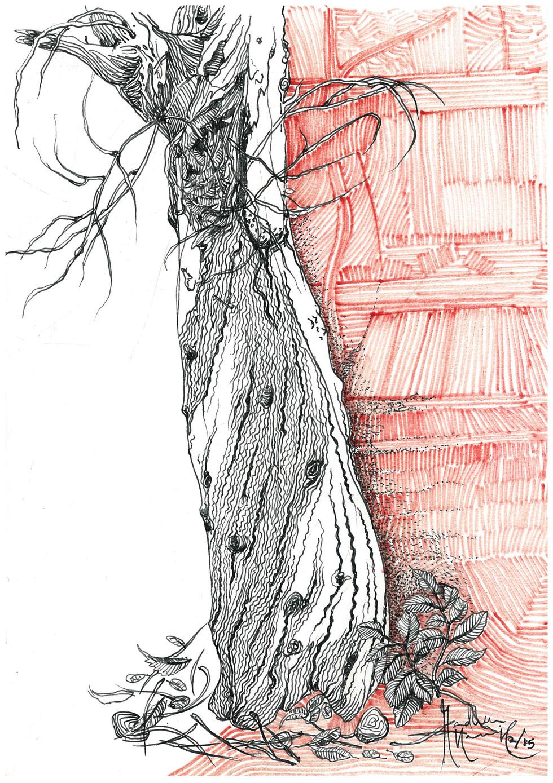Trees of CEPT