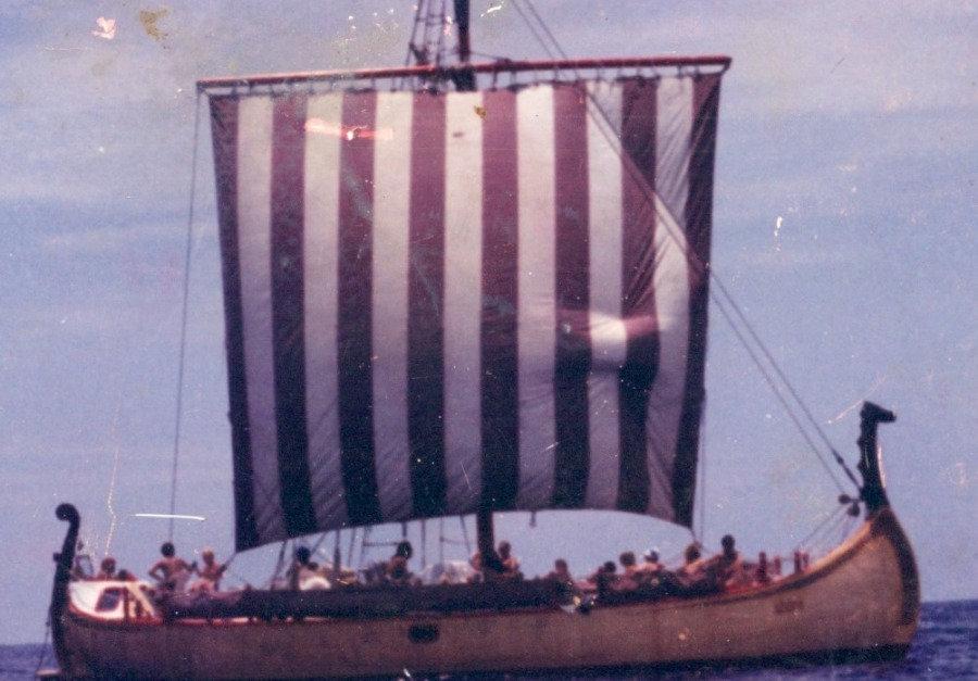 Vikings Smaller jpg