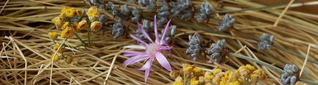 img - produse floral.jpg