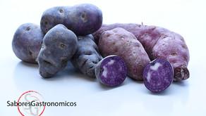 patatas violetas o moradas