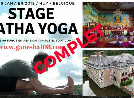 STAGE DE YOGA BELGIQUE 25 & 26 JANVIER 2019