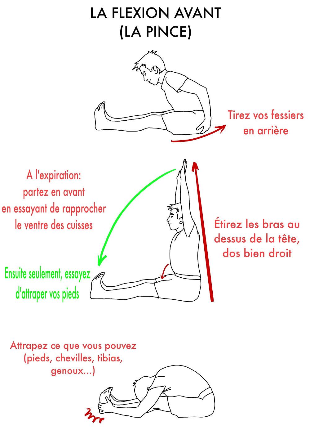 Yoga en ligne : La Pince - www.yogawebacademie.fr