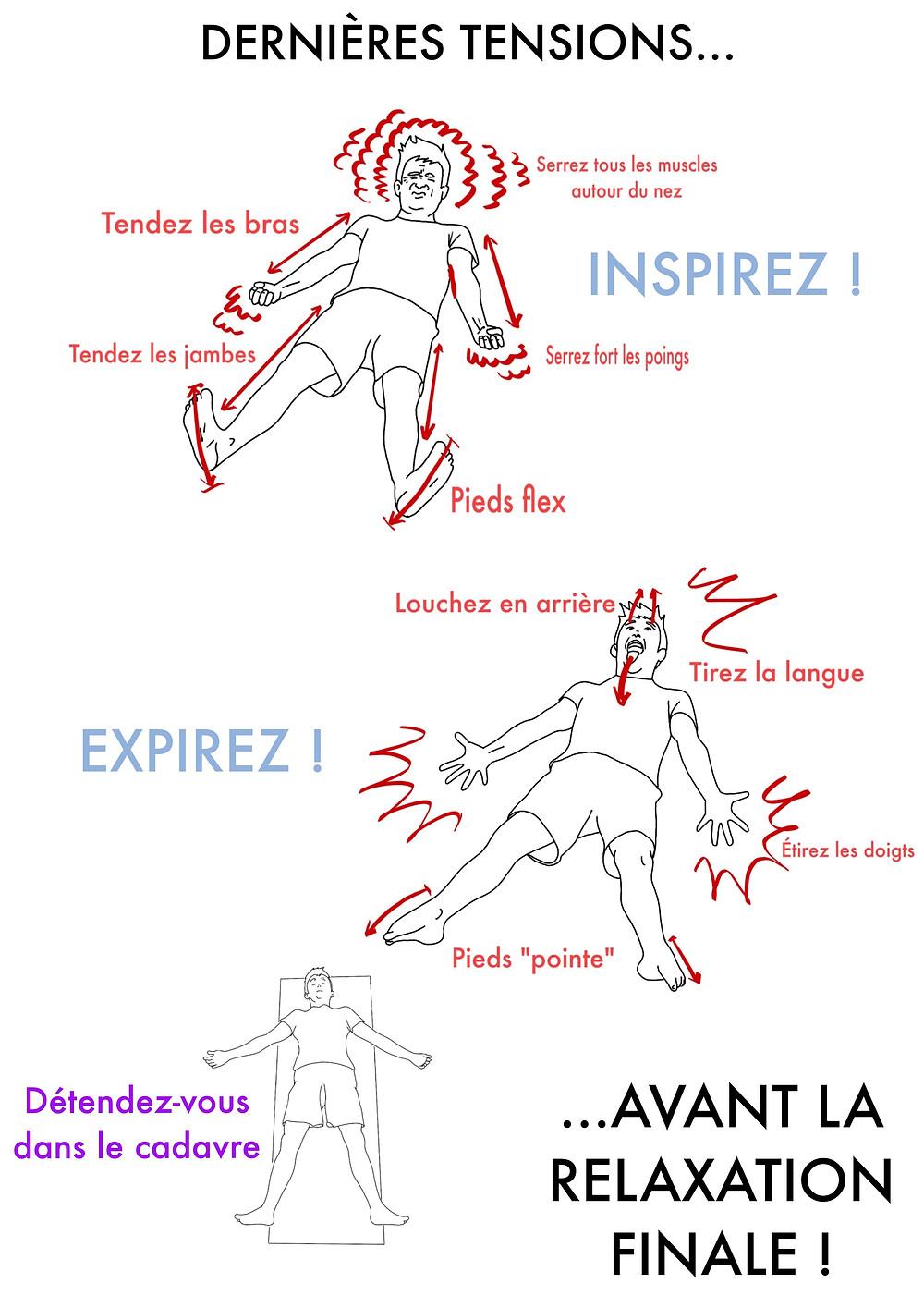 Cours de Yoga en ligne - www.yogawebacademie.fr