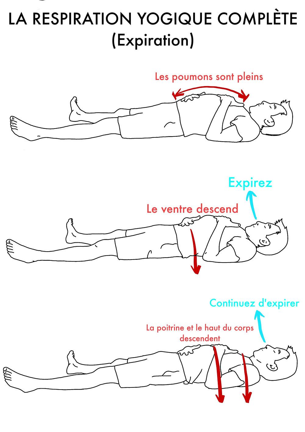 Cours de Yoga en ligne : La Respiration Yogique Complète