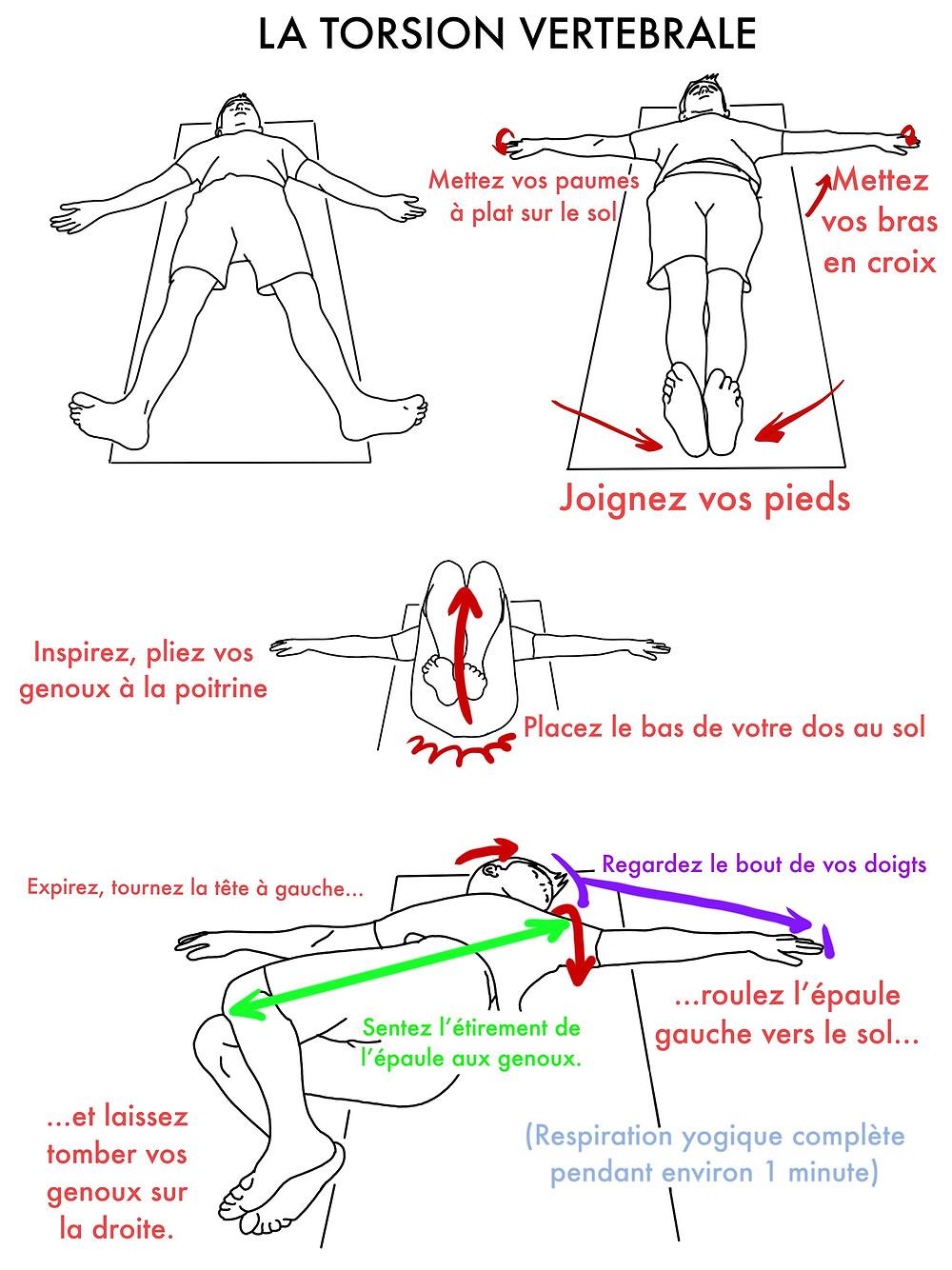 Cours de Yoga en ligne : La Torsion Vertébrale - www.yogawebacademie.fr