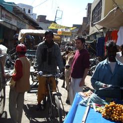 """Formation de professeurs de Yoga Sivananda, Vrindavan, Inde, 2007, Sébastien """"Ganesha"""" Cierco"""