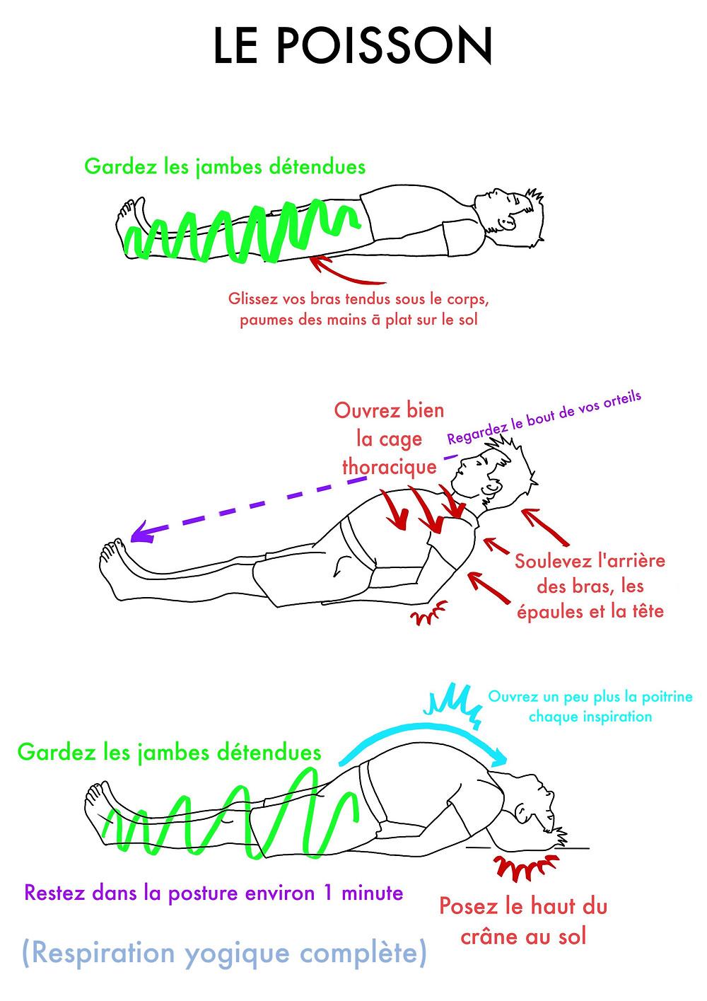 Yoga en ligne : Le Poisson - www.yogawebacademie.fr