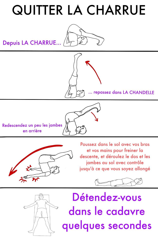 Yoga en ligne gratuit : La Charrue - www.yogawebacademie.fr
