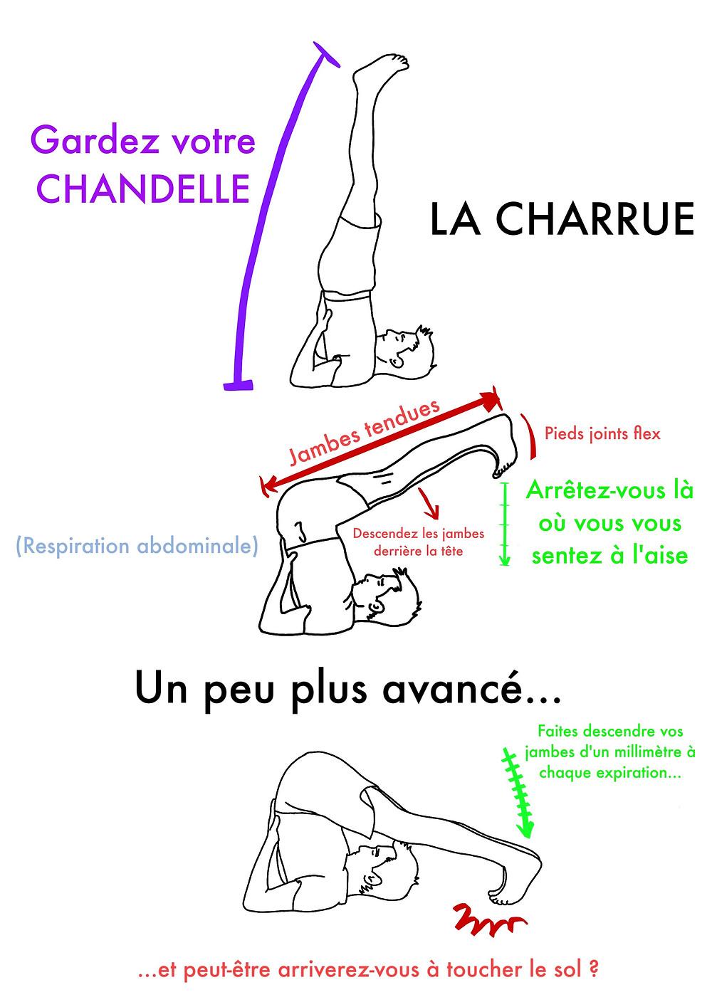 Yoga en ligne : La Chandelle - www.yogawebacademie.fr