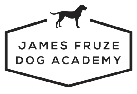 JAMES%20FRUZE%20DOG%20ACADEMY-A1_edited.