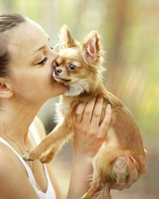 woman playing with a small dog.jpg