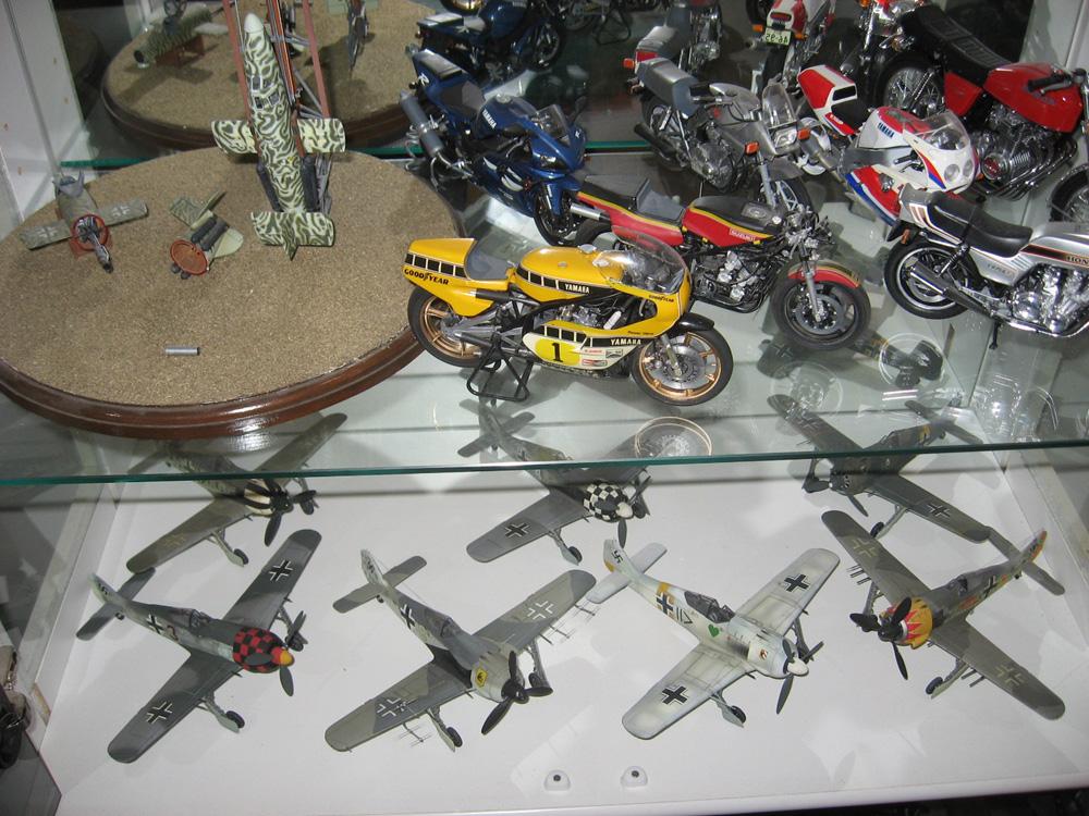 models 036