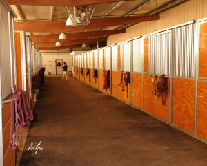 Facility-stalls-300x240