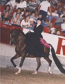 Side Saddle.jpg