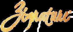 zignature-logo