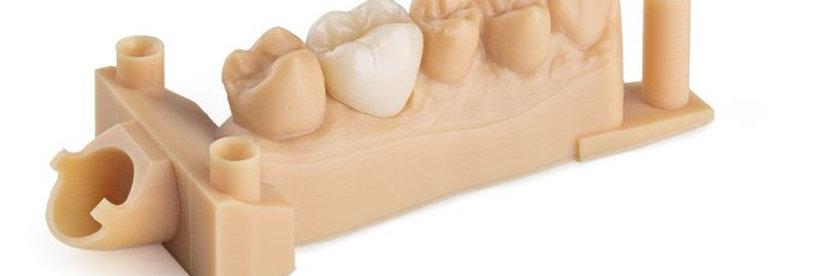 Dental Model Resin