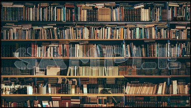 many_books-sample.jpg