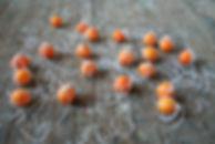 Orange alert Shura skaya