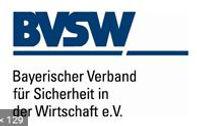 Logo BVSW.JPG