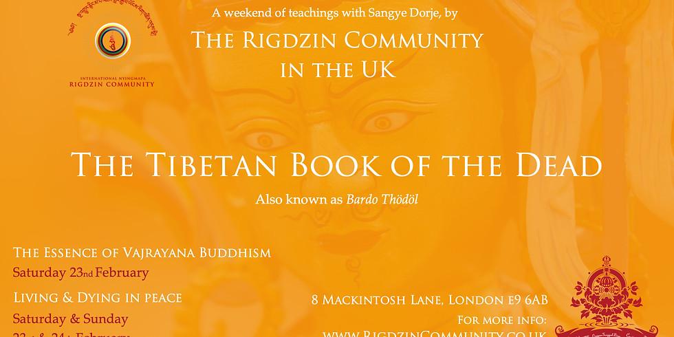 The essence of Vajrayana Buddhism: compassion, awareness & pure perception