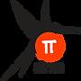 Pi-Sims Logo