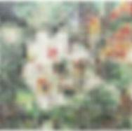 kiyohara01.jpg