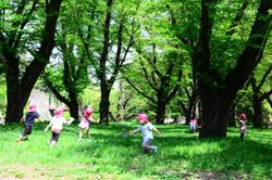 走り回る園児