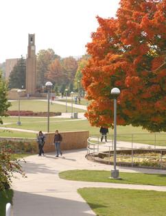 campus fall.jpg