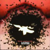 DW004  Ajilvsga / Blood Nocturnes