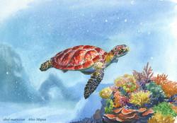 Иллюстрация Подводный мир