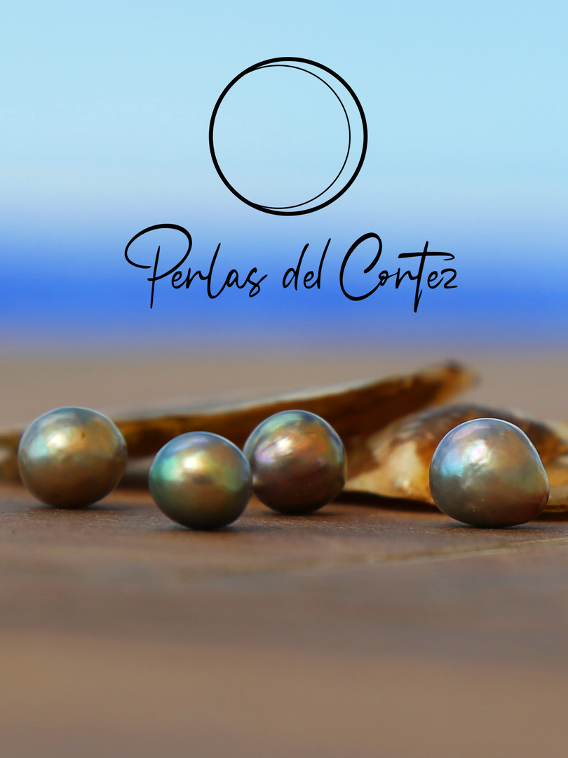 Perlas libres terraza.jpg