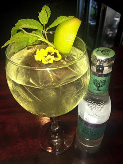 Our tonics, from Fevertree.