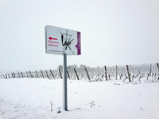 Laxé sous la neige
