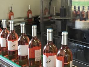 Mise en bouteille - Rosé tradition