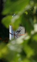 Grand vin - Soleil d'Oranie