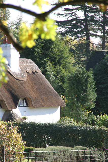 Thatched cottage Emery Down_Donna Rutherford