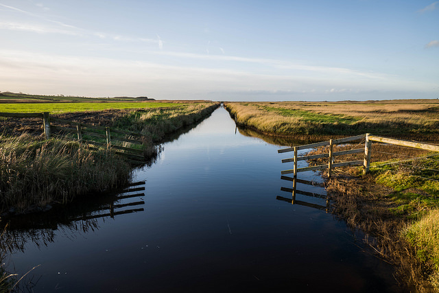 Salthouse Marshes_Adam Singer