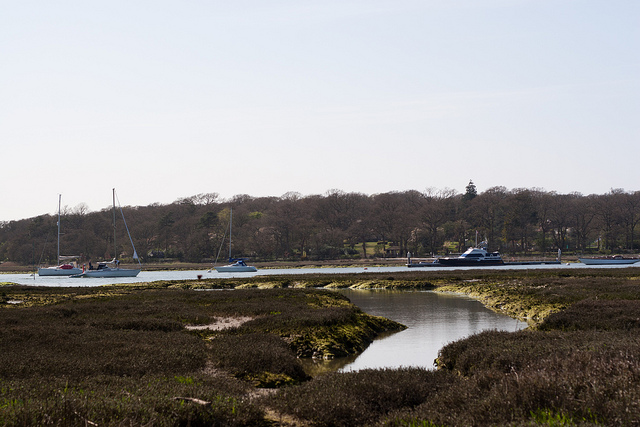 Beaulieu River from Exbury_Ben Grantham