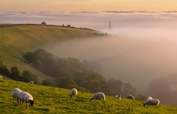 Above Askerswell/Malcolm Balmer
