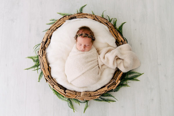 Baby Photographer Brisbane.jpg
