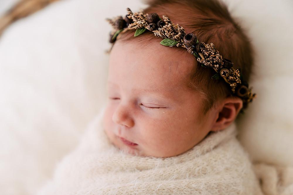 Gumnut Baby photoshoot