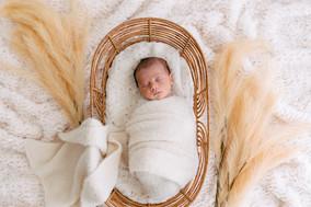 Baby Photography Brisbane.jpg