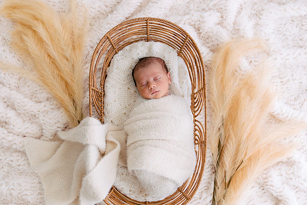 Swaddled Newborn baby sleeping in cane bassinet being photographed